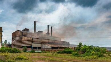 Photo of مهمة صعبة.. جنوب أفريقيا تواجه تحديات لتحقيق الحياد الكربوني
