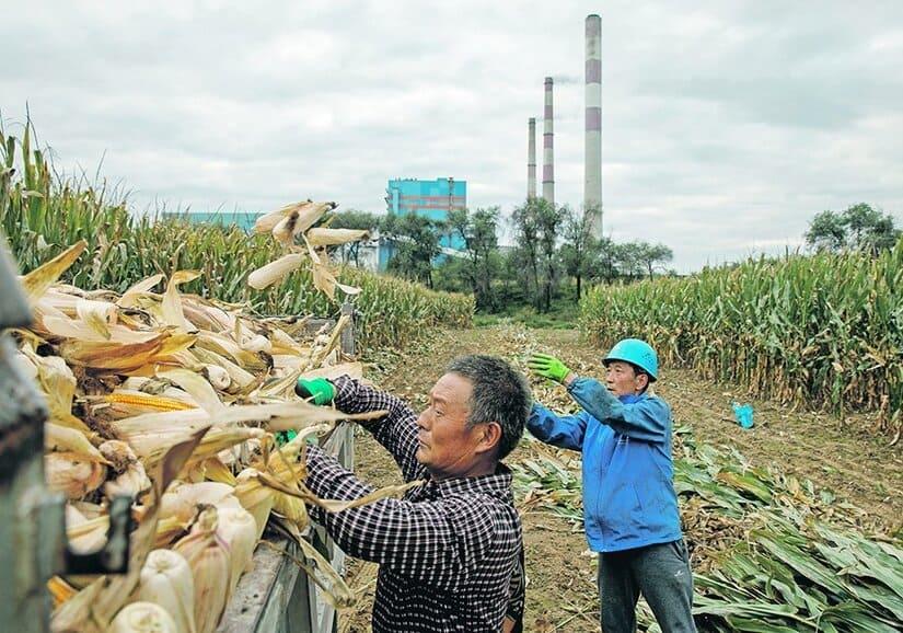 الصين - الإيثانول
