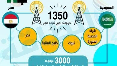 Photo of الربط الكهربائي بين مصر والسعودية.. تفاصيل جديدة
